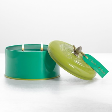 Cactus Verde Essential Color Block Tin