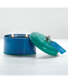 Blue Coral Essential Color Block Tin