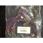 P125 20 Pin Control Harness (not shown)  REV 0, REV 1