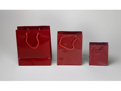 Burgundy Shopping Bags