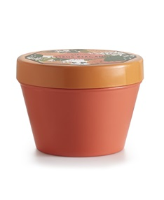 Citrus Bergamot Chroma Tin