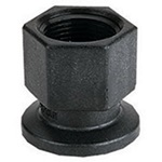 Banjo Poly Flanged Coupling x Female NPT
