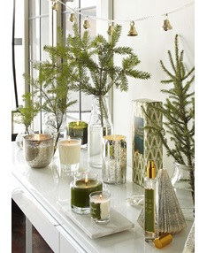 Balsam & Cedar Large Boxed Glass