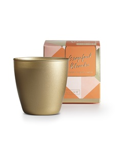 Grapefruit Oleander Demi Boxed Glass