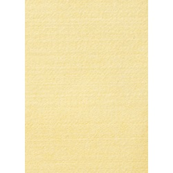 8x10 IN-AMI-THERM®-(NX) Felted Cloth-NX16F