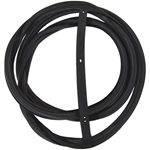 Windshield Gasket