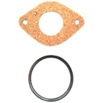 License lens gasket