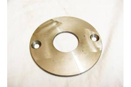 Banjo Cast Iron Pump Wear Plate