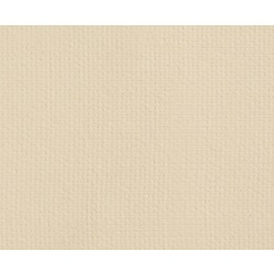 8X10-AMI-GLAS®(RGL)Rewettable Cloth-RGL1450  8x10 IN