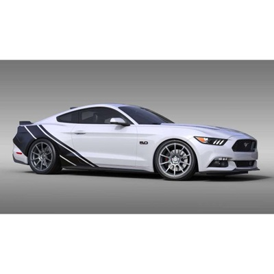 Rally Stripe Coupe Graphics (satin black)