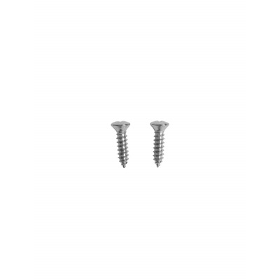 1964-73 Door Sill Repair Screws