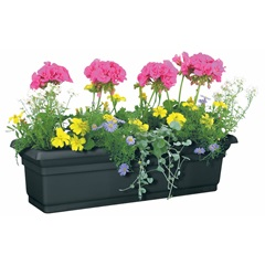 "24"" Distinction Window Box"