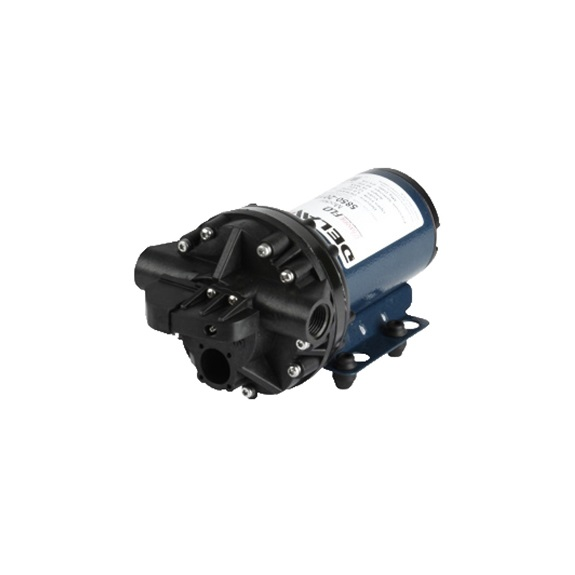 Delavan 5830-301C 12V Demand Pump-BOOK