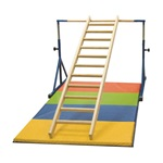 Gibson Training Ladder