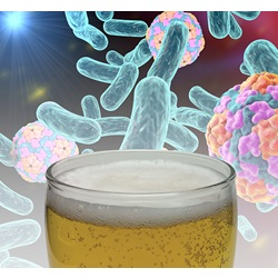 Beer Spoilage PCR Micro Test Kit (Microbiologique)