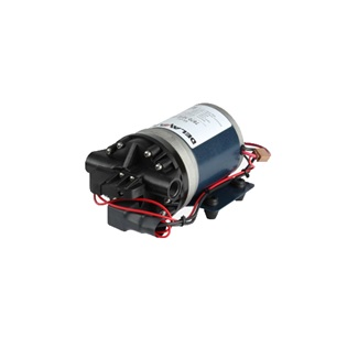 Delavan 12V Demand Pump