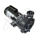 PUMP: 3.0HP 230V 60HZ 2-SPEED 48 FRAME EX2