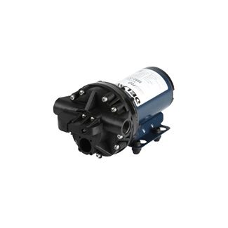 Delavan 5830-301C 12V Demand Pump