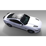 Battleborn Roof Graphic (satin black)