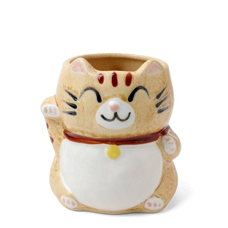 Mug Fortune Cat Tabby