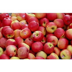 APPLES BRAEBURN OG