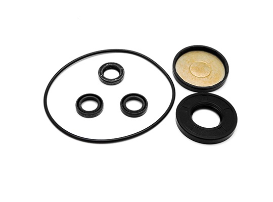 Veloci Replacement Pump Kit for AR Kit 2786