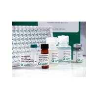 PathoScreen® Kit for Impatiens necrotic spot virus (INSV)