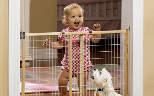 Shop Baby Gates Image