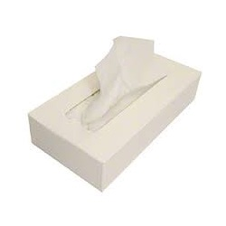 Facial Tissue 100 Ct  Flat Box
