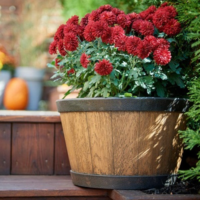 "15.5"" Whiskey Barrel Planter"