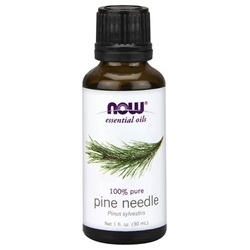 Pine Needle Essential Oil - 1 FL OZ