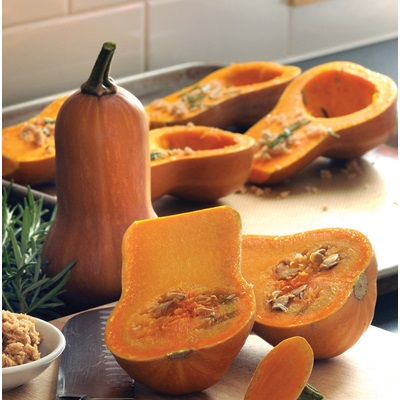 Honeynut Butternut