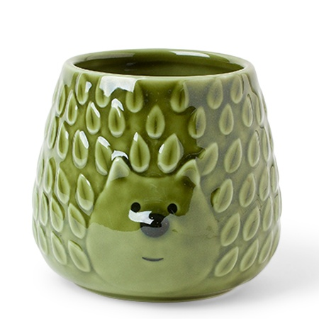 Mug Green Hedgehog