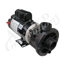 PUMP: 1.5HP 115V 60HZ 2-SPEED 48 FRAME