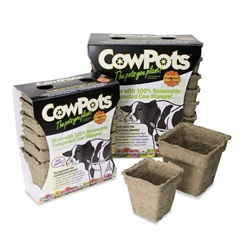 Biodegradable Cow Pots