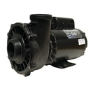 PUMP: 3.0HP 230V 60HZ 2-SPEED 56 FRAME EXECUTIVE