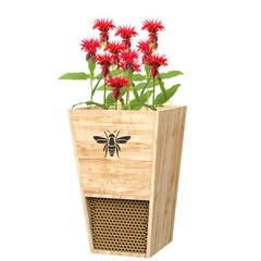 Heavy Duty Cedar Bee House / Planter