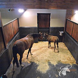 ideas aisle flooring ahoy stall best drainage pinterest pole barns images horse barn on