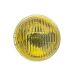 Fog Light Lens