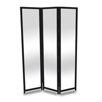 Tri-Shield 6001-00101 Barrier with Black Frame