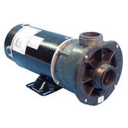 PUMP: 2.0HP 230V 60HZ 2-SPEED 48 FRAME