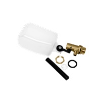 "MTM Hydro 3/4"" Brass Float Valve with Filter and Pipe"
