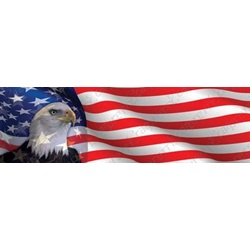 Eagle Head On American Flag