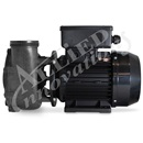 PUMP: 2.5HP 240V 50HZ 1-SPEED 56 FRAME FLO-MASTER XP2E EURO