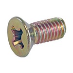 Striker Plate Screws