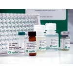 Bt-Cry34Ab1 Quantitative ELISA Kit