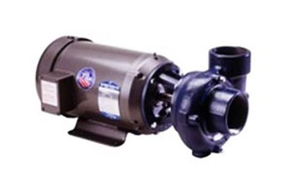 Price Pump Bronze Centrifugal Pump RC300 With Trimmed Impeller