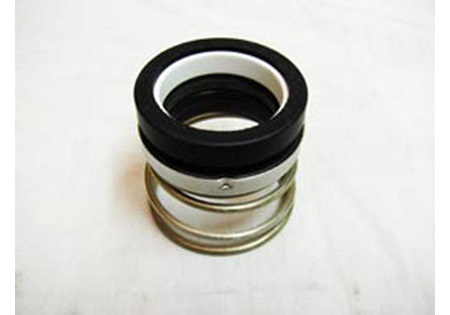 Banjo Cast Iron Pump Viton Seal Assembly