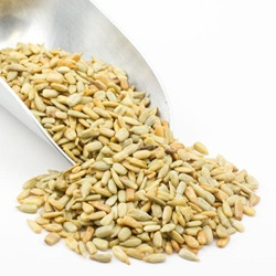 Sunflower Seeds - Roasted, No Salt