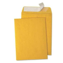 "6 X 9"" KRAFT SELF-SEAL ENVELOPES 500/CS  EN1068"